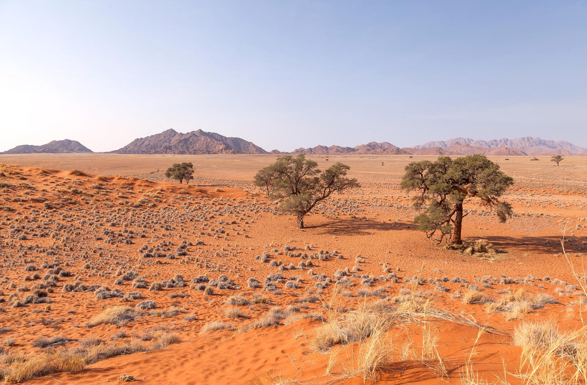 Adventure-Center-Sossusvlei-Lodge-Namibia-39
