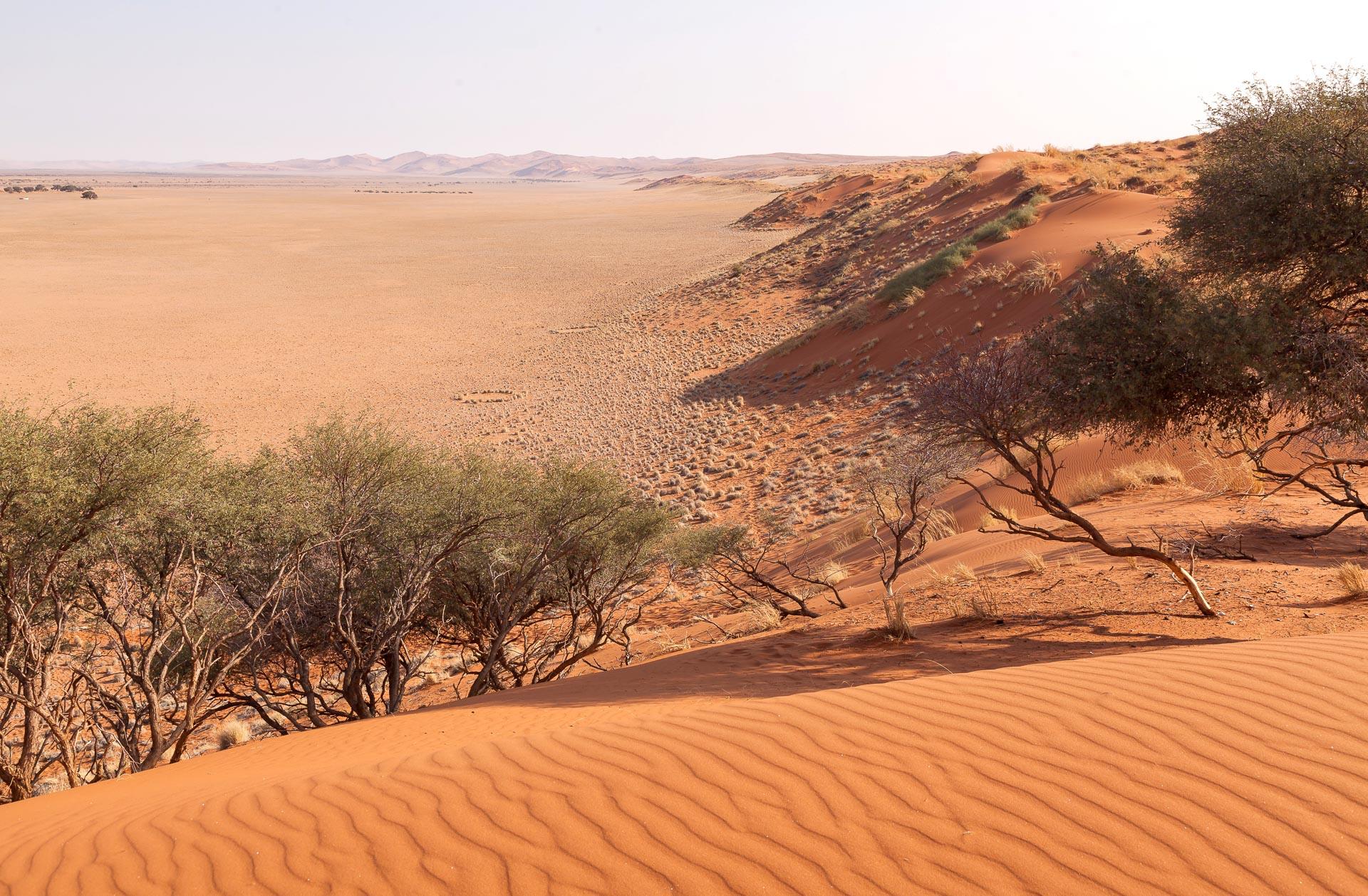 Adventure-Center-Sossusvlei-Lodge-Namibia-41