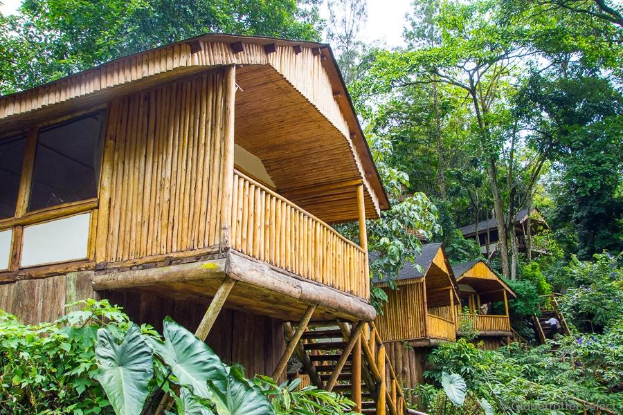 Buhoma-Lodge-Bwindi-Uganda-Globetrotter-Select-GS16
