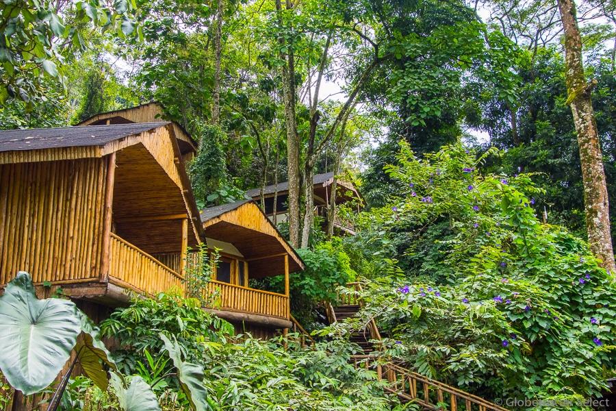 Buhoma-Lodge-Bwindi-Uganda-Globetrotter-Select-GS20