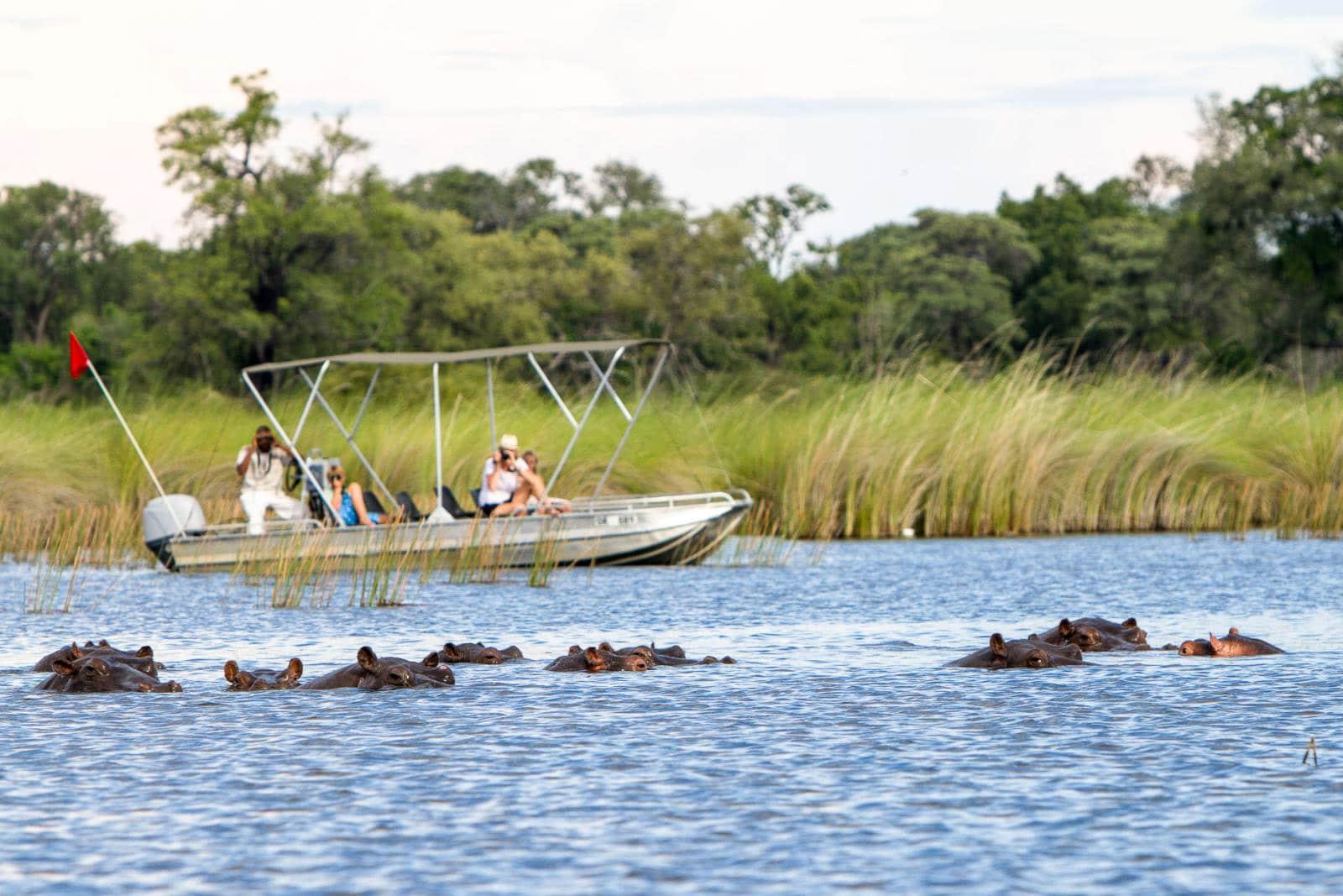 Camp-Moremi-Okavango-Delta-Botswana-8