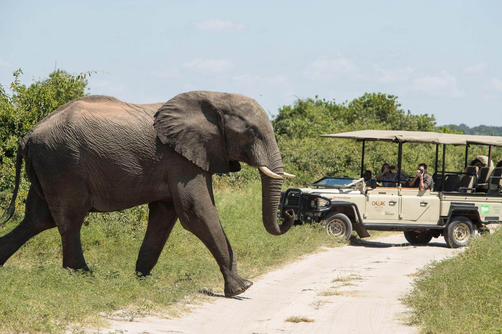 Chobe-Game-Lodge-Botswana-13