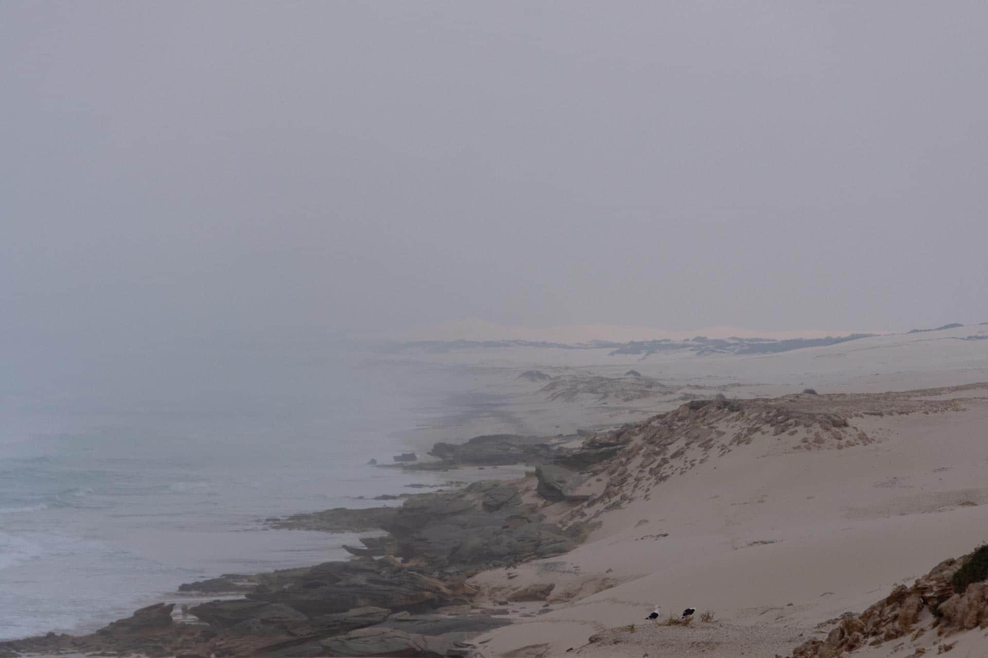 De-Hoop-Nature-Reserve-Suedafrika-Globetrotter-Select-21