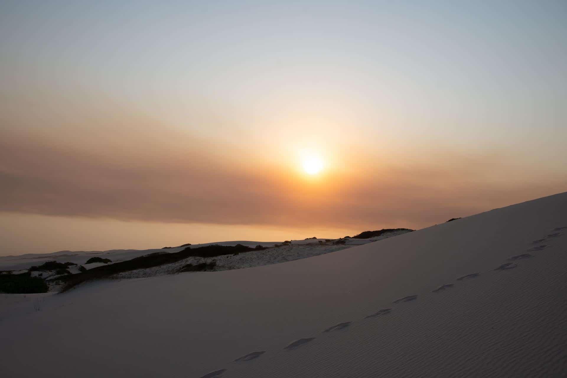De-Hoop-Nature-Reserve-Suedafrika-Globetrotter-Select-6
