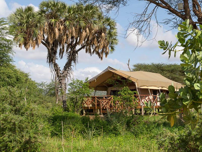 Elephant-Beedroom-Camp-14-von-15