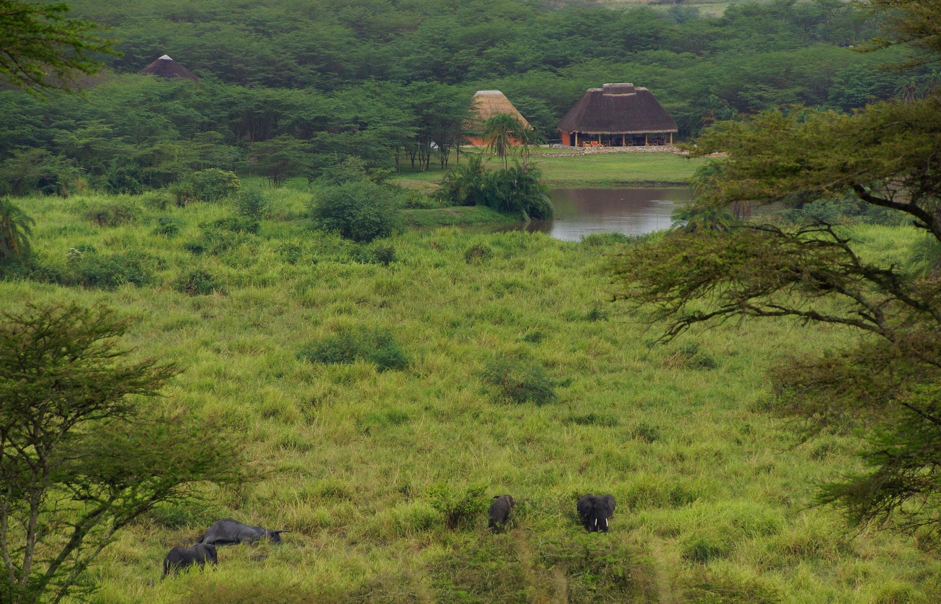 Enjojo-Lodge-Uganda-11