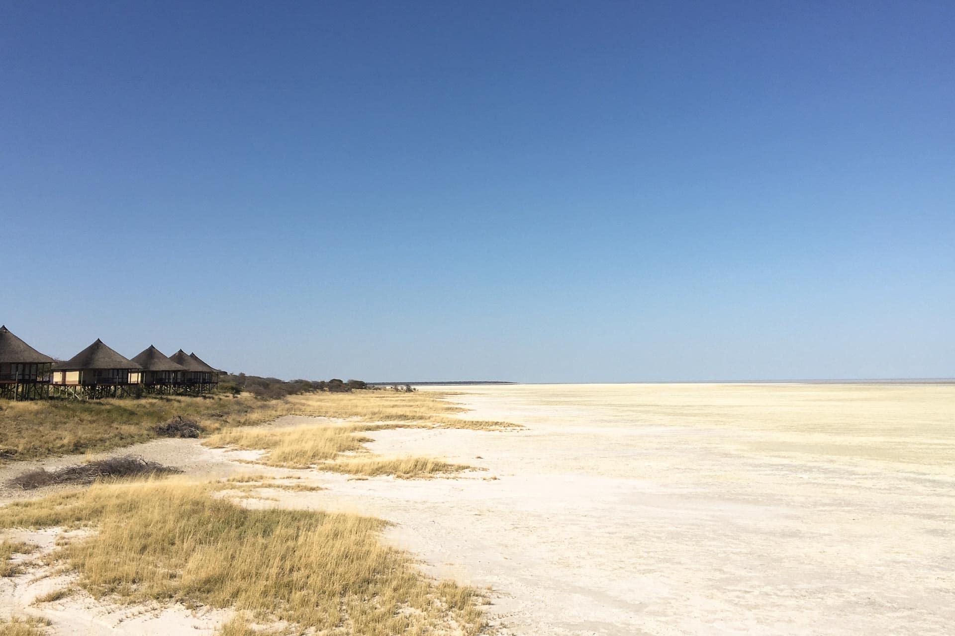 Etosha-Nationalpark-Namibia-Globetrotter-Select-1