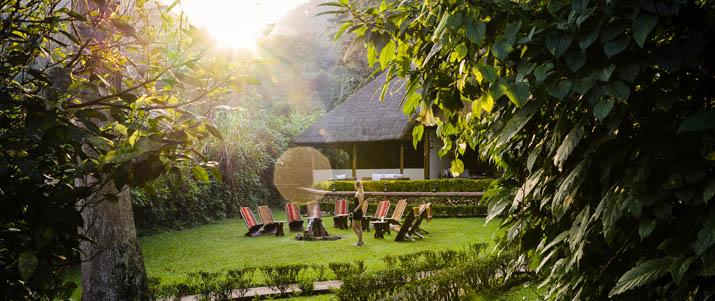 Gorilla-Forest-Camp-Sanctuary-Retreats-13-von-14
