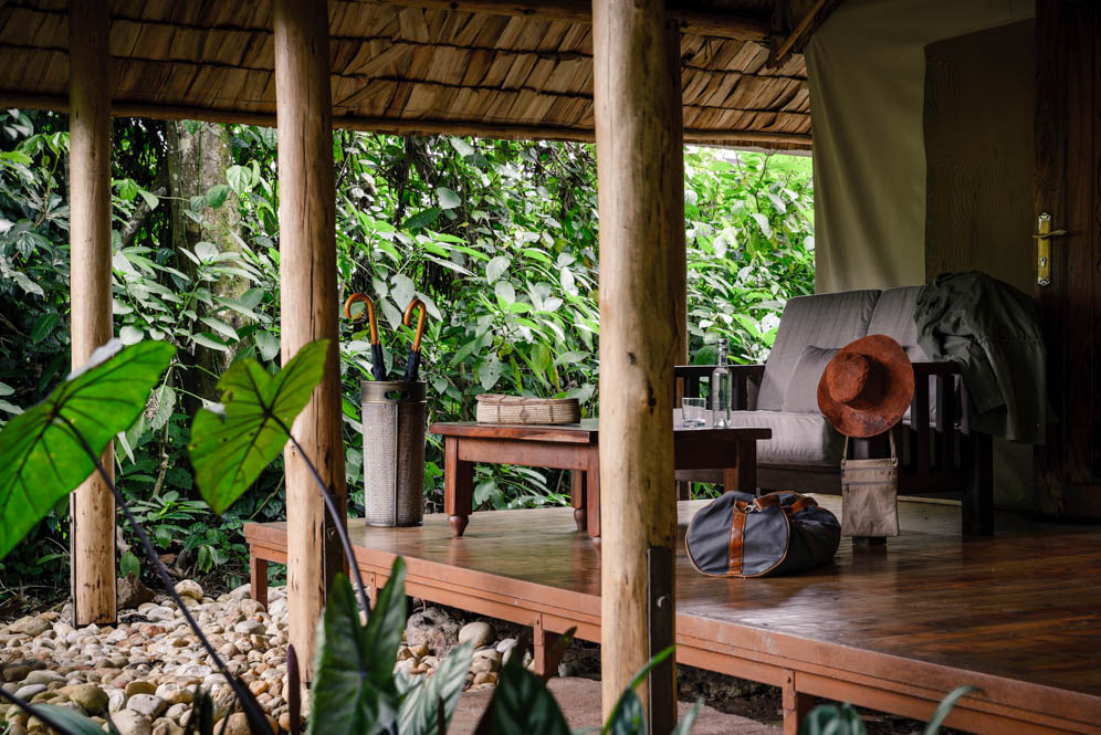 Gorilla-Forest-Camp-Sanctuary-Retreats-4-von-14