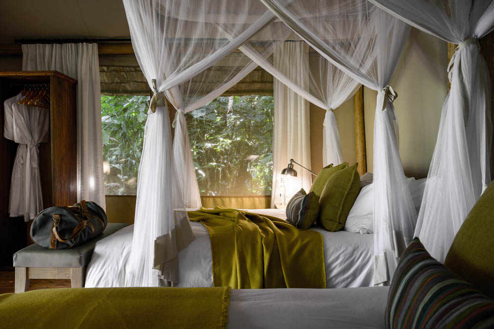 Gorilla-Forest-Camp-Sanctuary-Retreats-9-von-14
