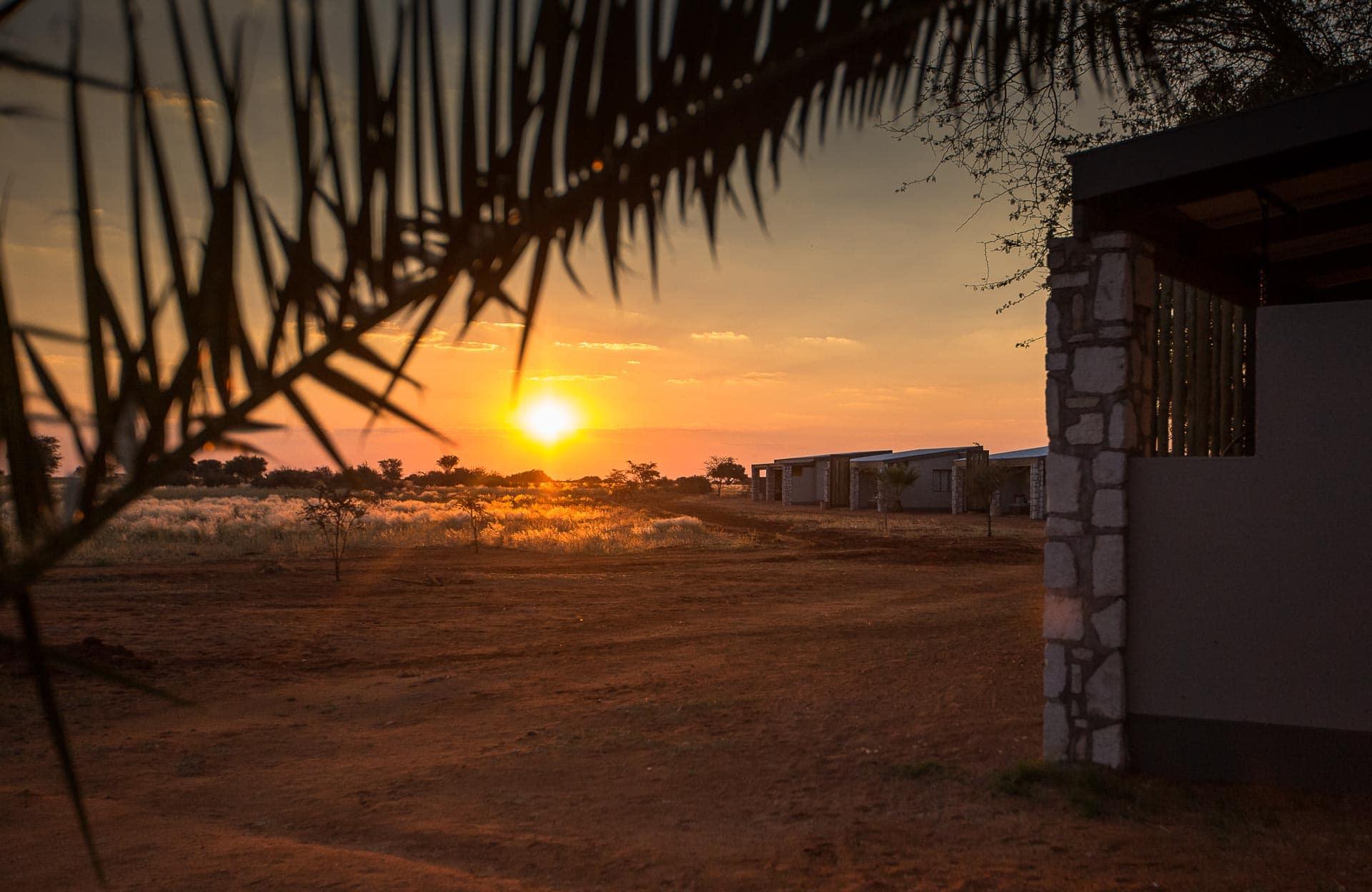 Kalahari-Anib-Lodge-6