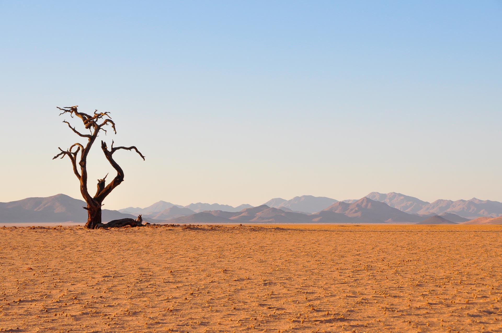Kanaan-Desert-Retreat-Namibia-Globetrotter-Select-21