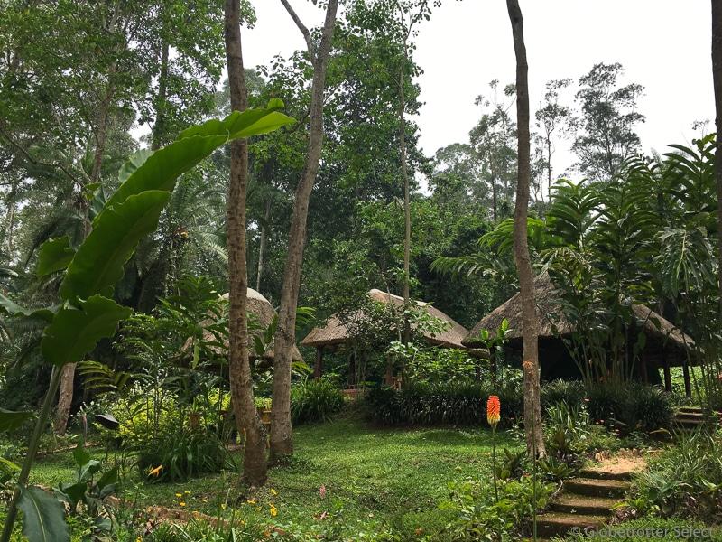 Kibale-Forest-Camp-Gloetrotter-Select1
