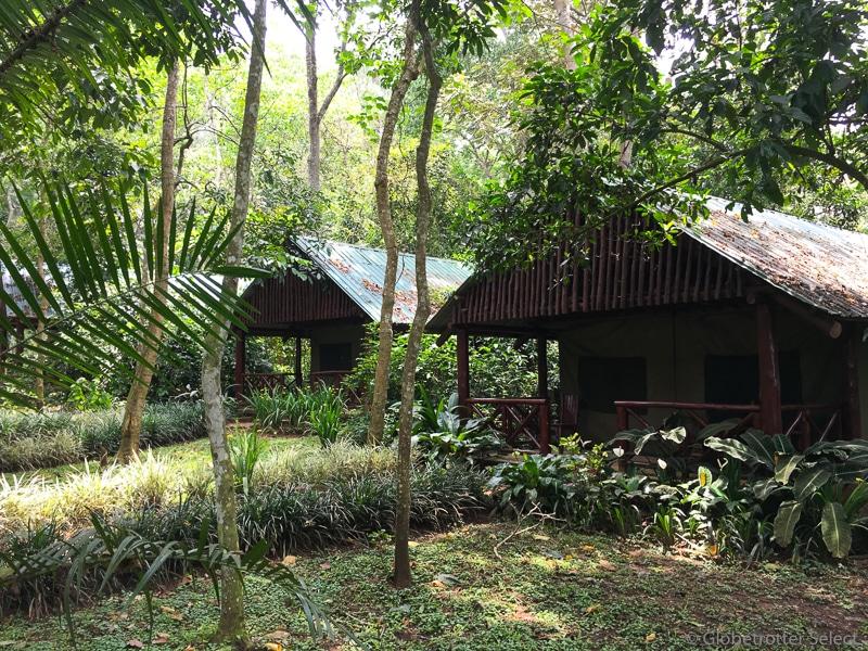 Kibale-Forest-Camp-Gloetrotter-Select3