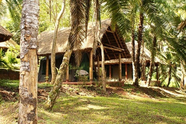 Kibale-Forest-Camp1