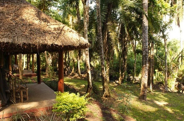 Kibale-Forest-Camp3
