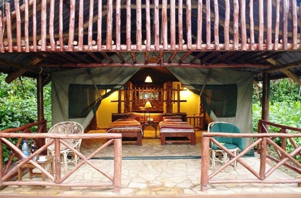 Kibale-Forest-Camp4