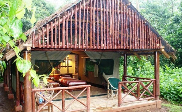 Kibale-Forest-Camp5