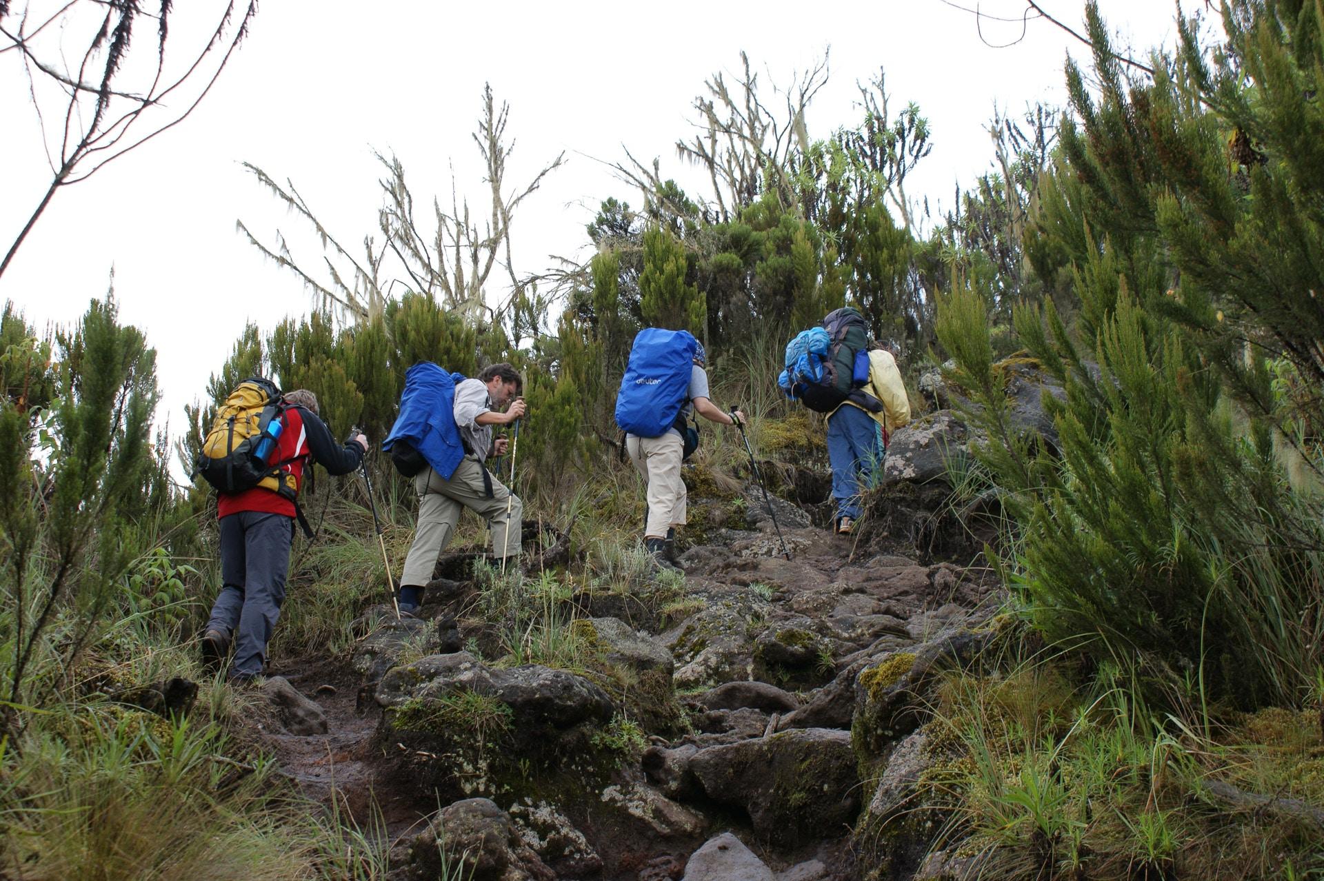 Kilimanjaro-Tansania-Globetrotter-Select-Krause-02