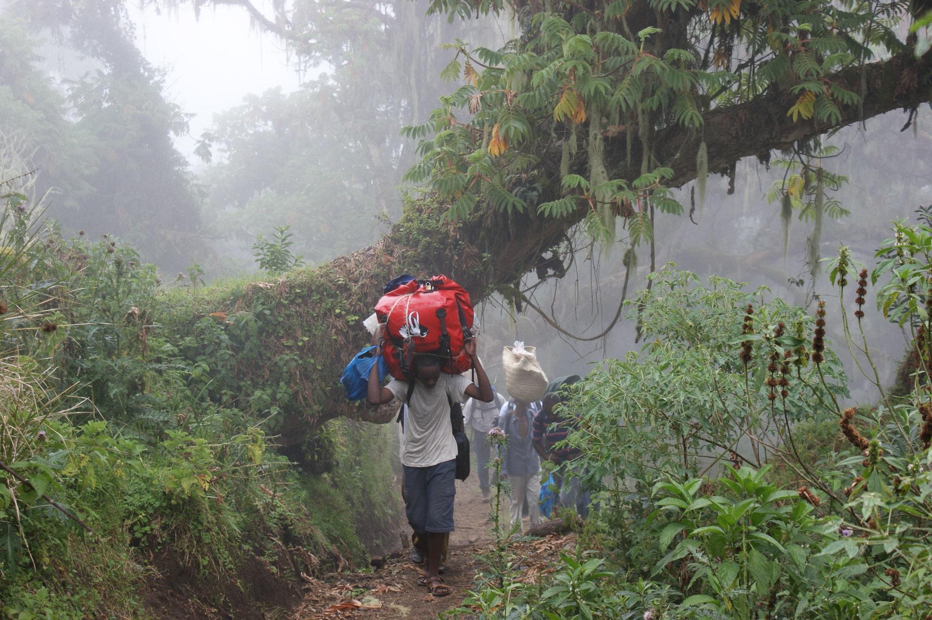 Kilimanjaro-Tansania-Globetrotter-Select-Krause3