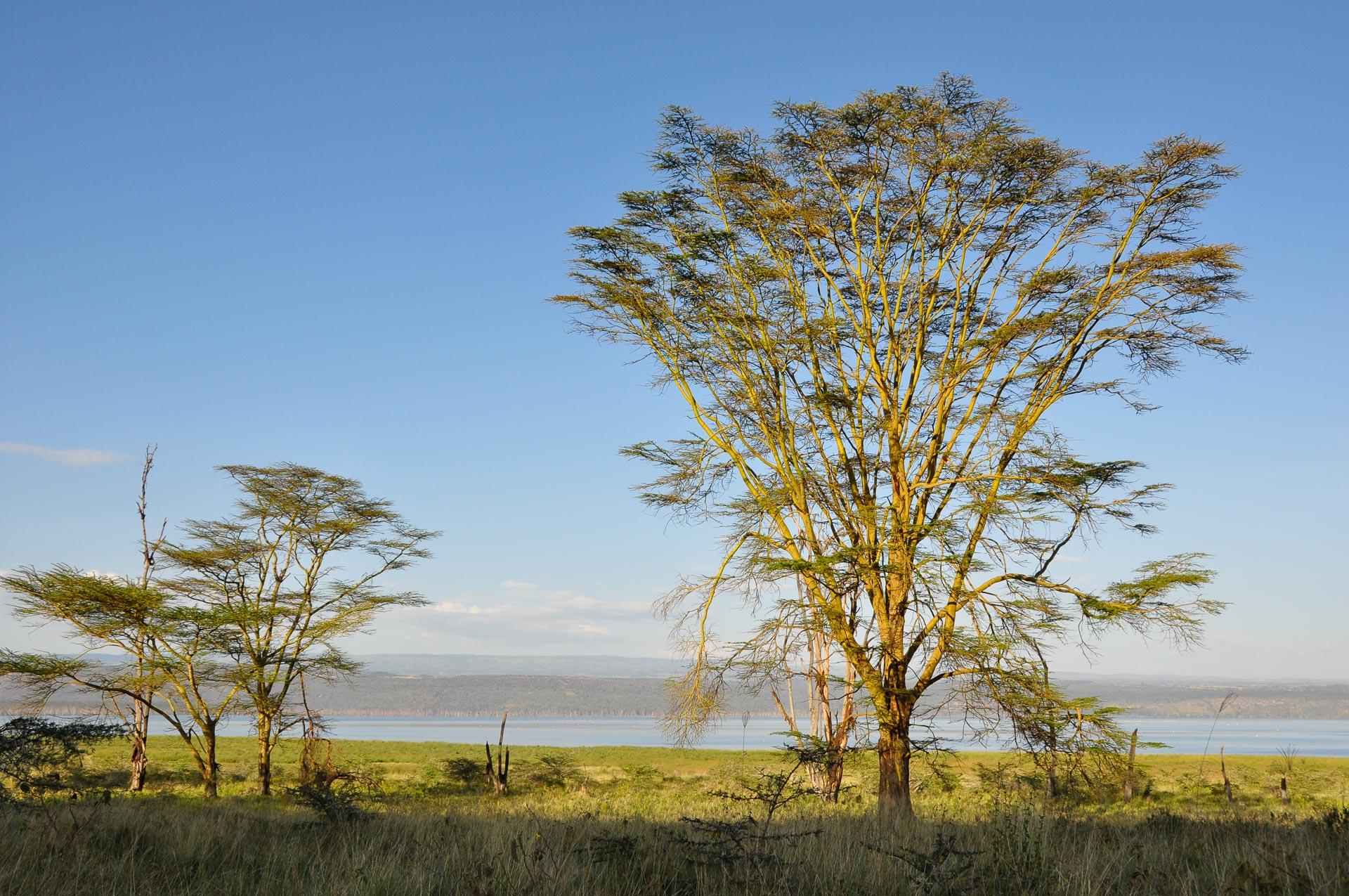 Lake-Nakuru-Nationalpark-Kenia-Globetrotter-Select-3