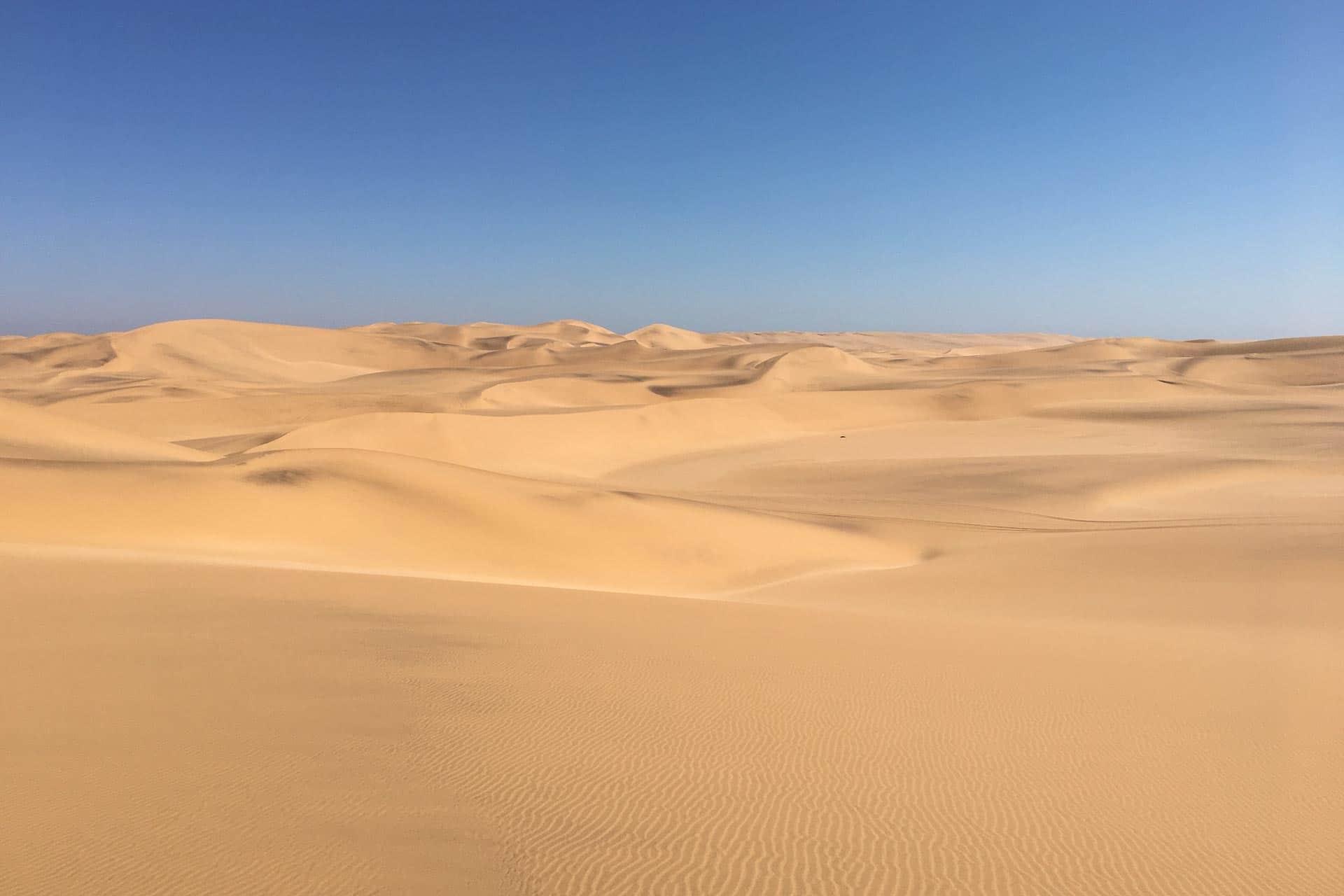 Living-Desert-Tour-Swakopmund-Namibia-Globetrotter-Select-18