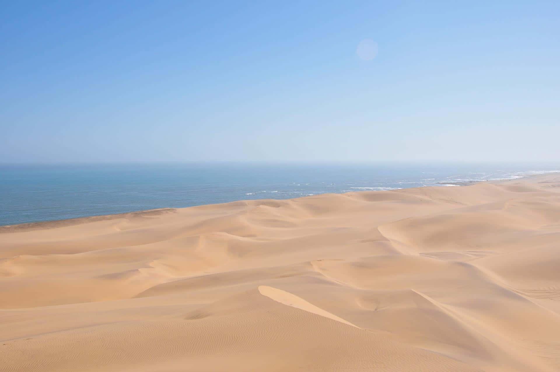 Living-Desert-Tour-Swakopmund-Namibia-Globetrotter-Select-27