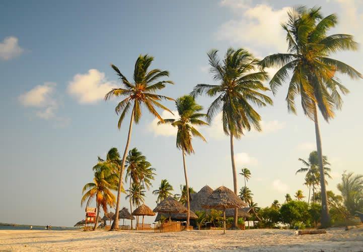 Mafia Island Lodge (4 von 7)