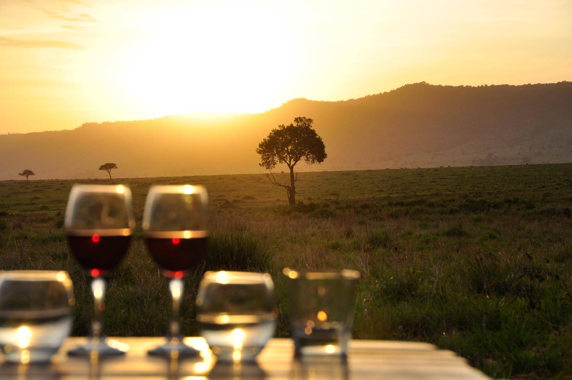 Masai-Mara-Sundowner-Kenia-Globetrotter-Select-8