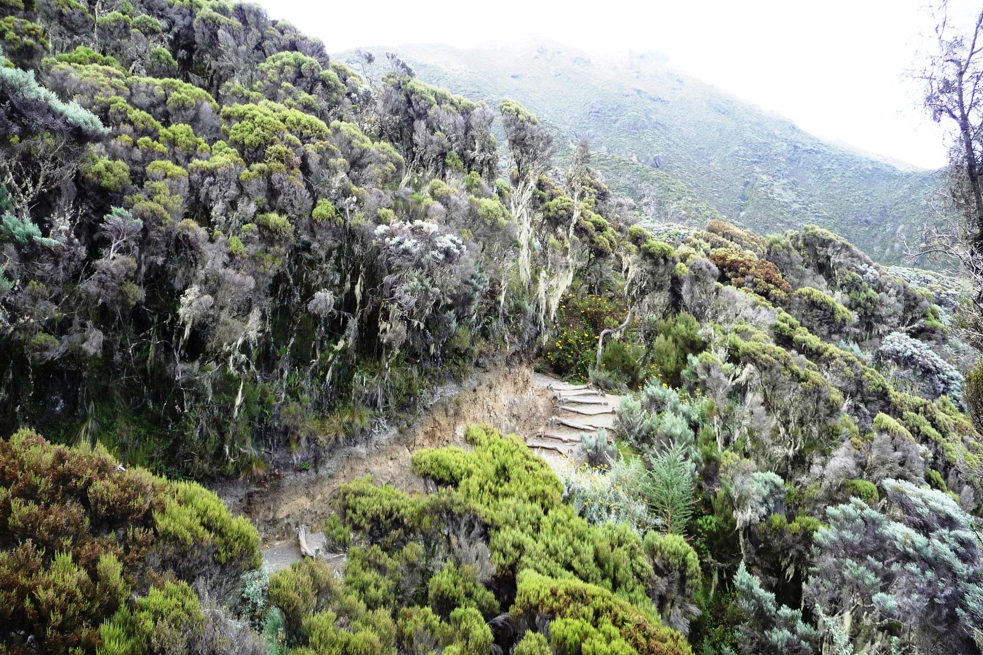 Mount-Meru-Arusha-Nationalpark-Tansania-Globetrotter-Select-Boehm-55