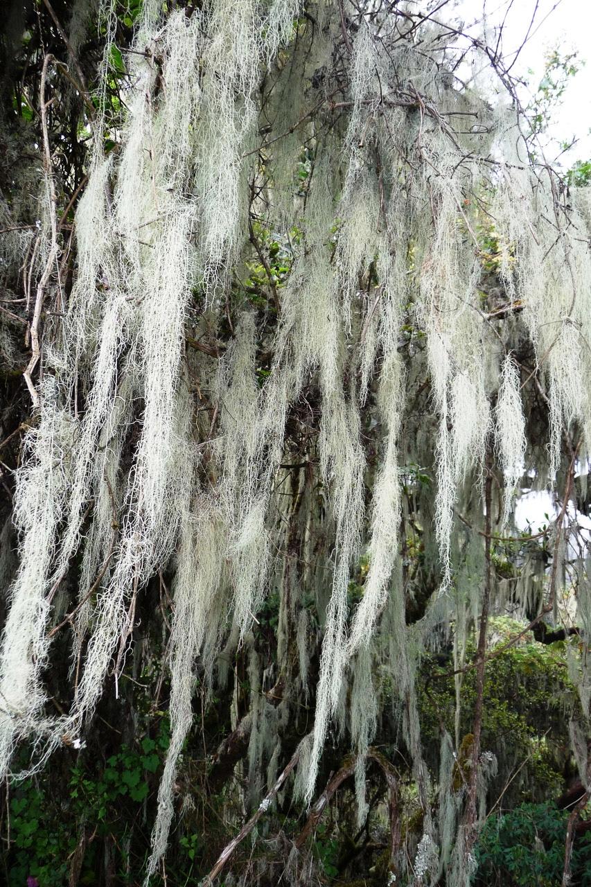 Mount-Meru-Arusha-Nationalpark-Tansania-Globetrotter-Select-Boehm-59