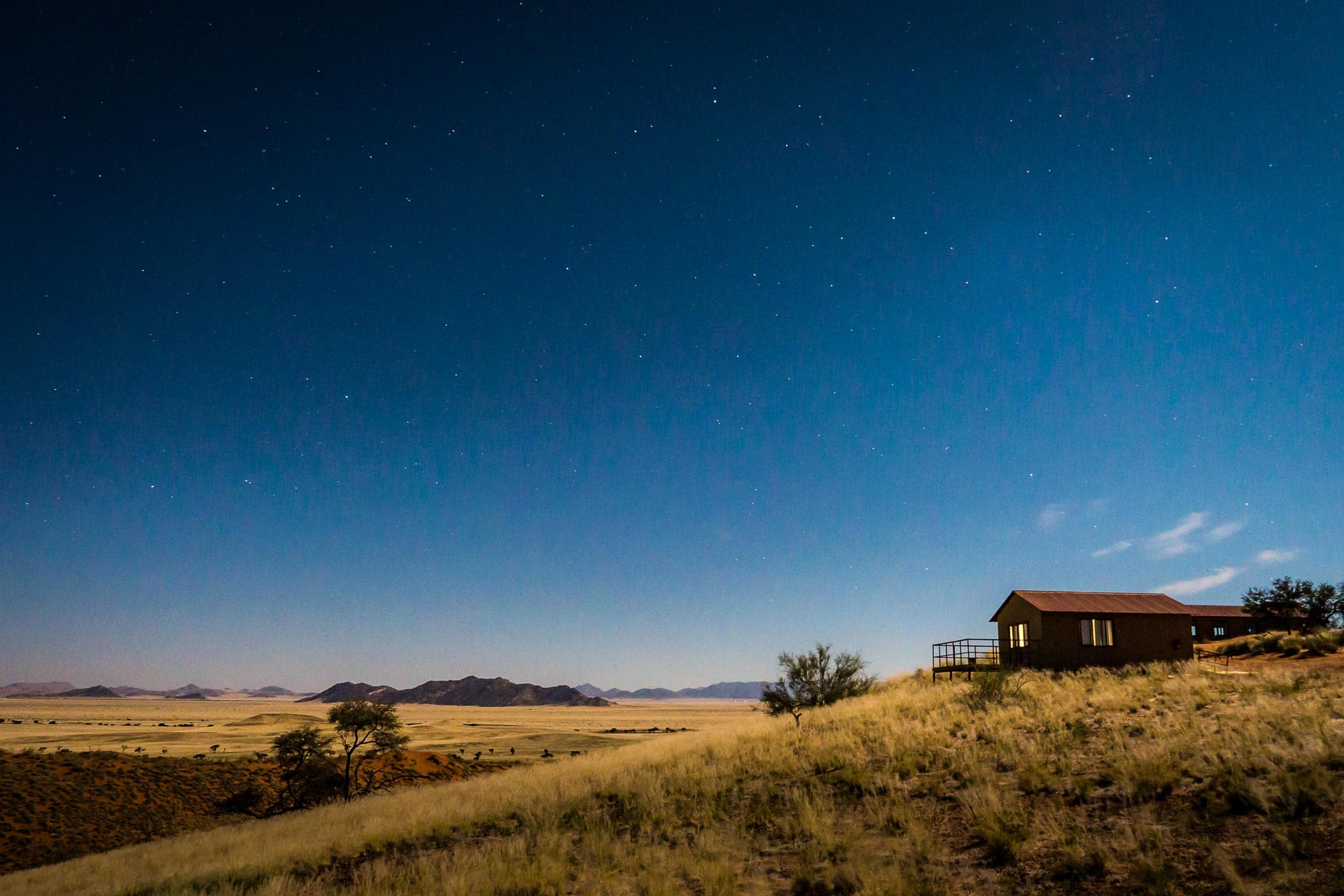 Namib-Dune-Star-Camp-8