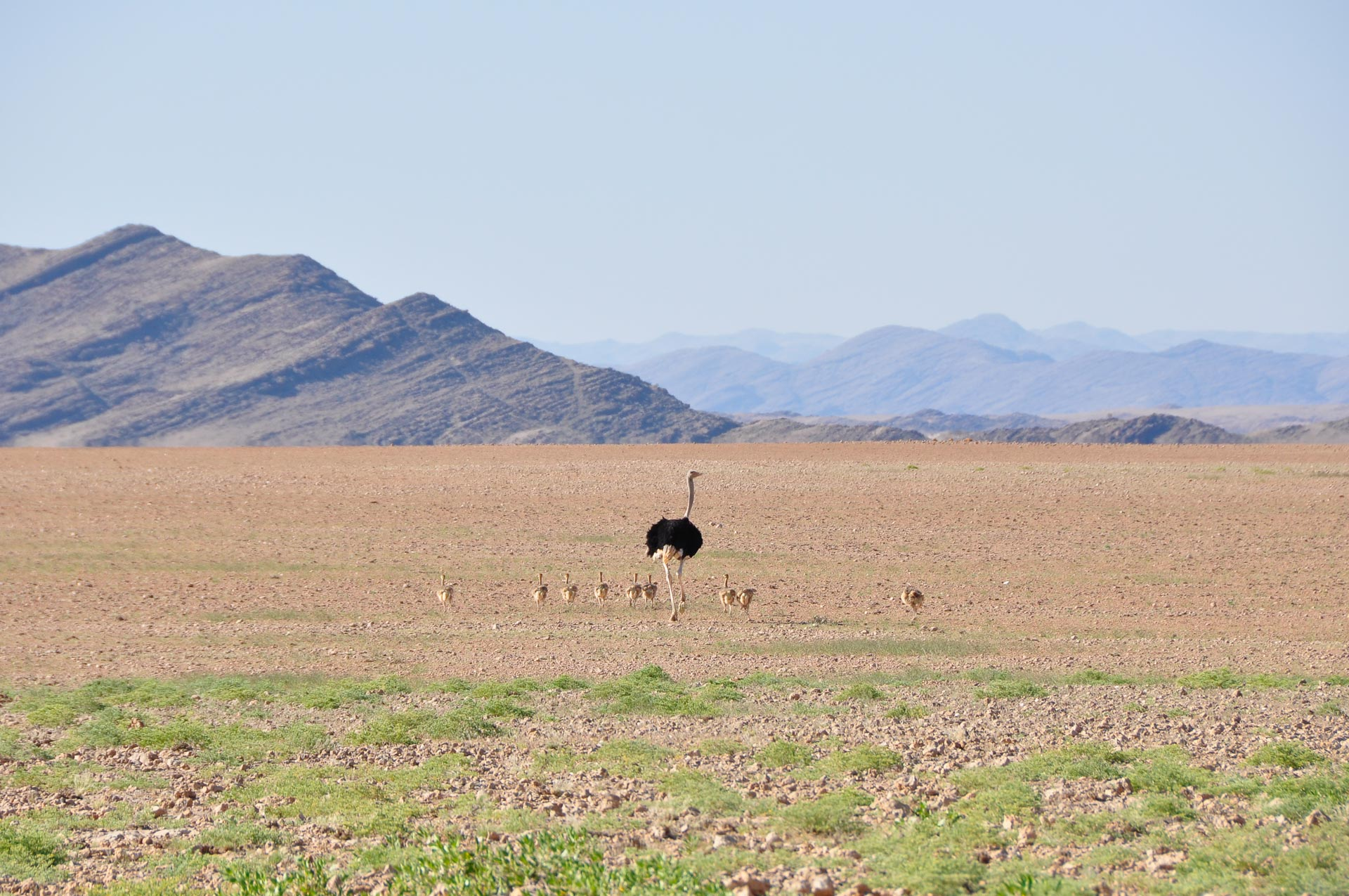 Namibia-Landschaften-Globetrotter-Select-1
