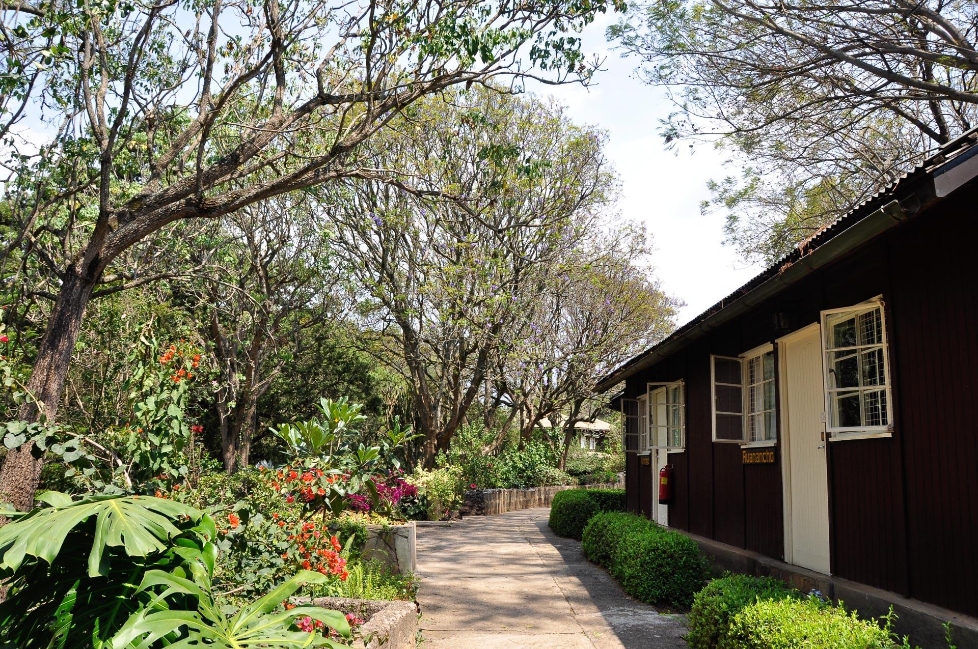 Naro-Moru-River-Lodge-Kenia-Globetrotter-Select-7