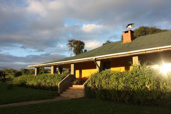 Ngorongoro Rhino Lodge (2 von 7)