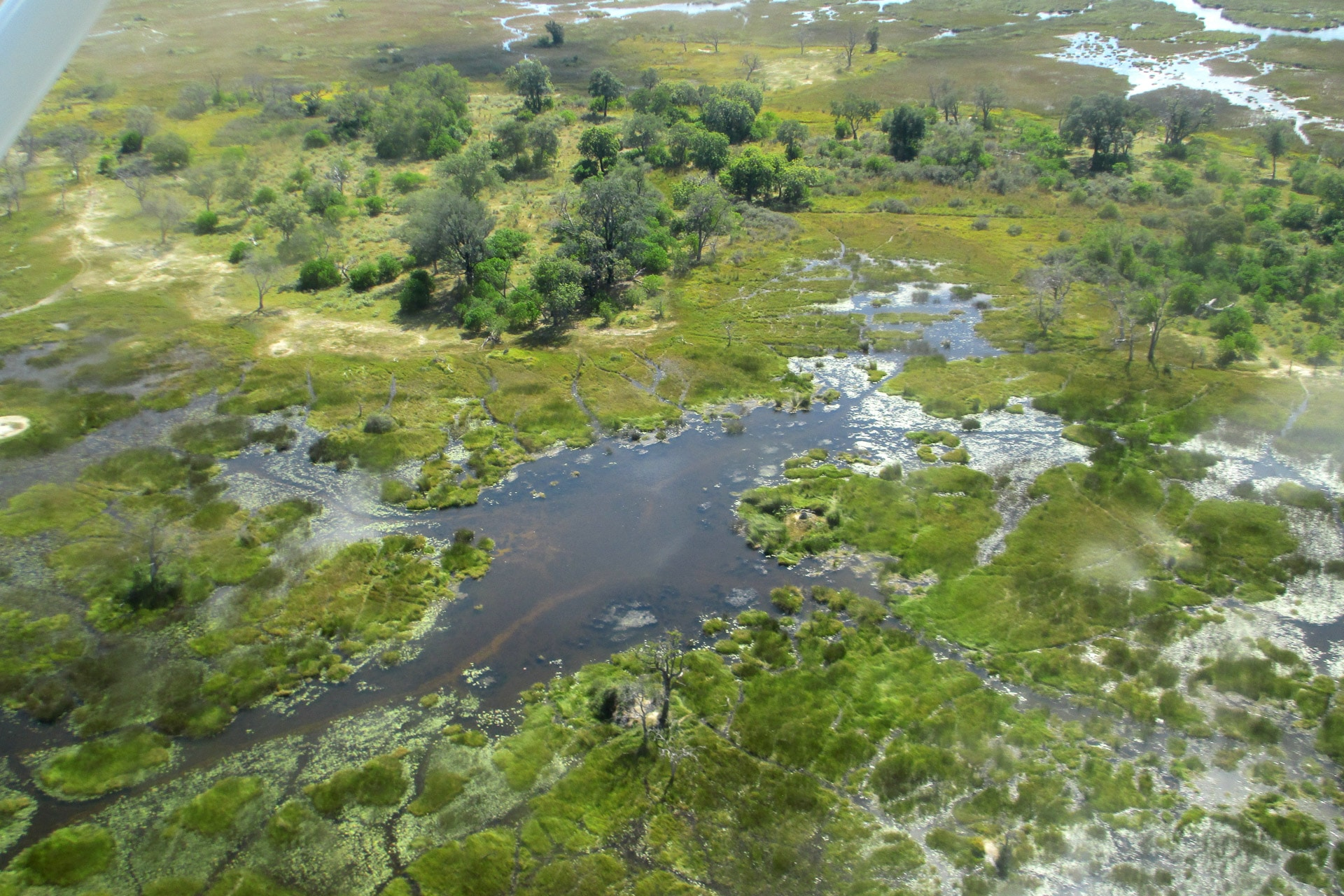 Okavango-Delta-Globetrotter-Select-Seigert-2