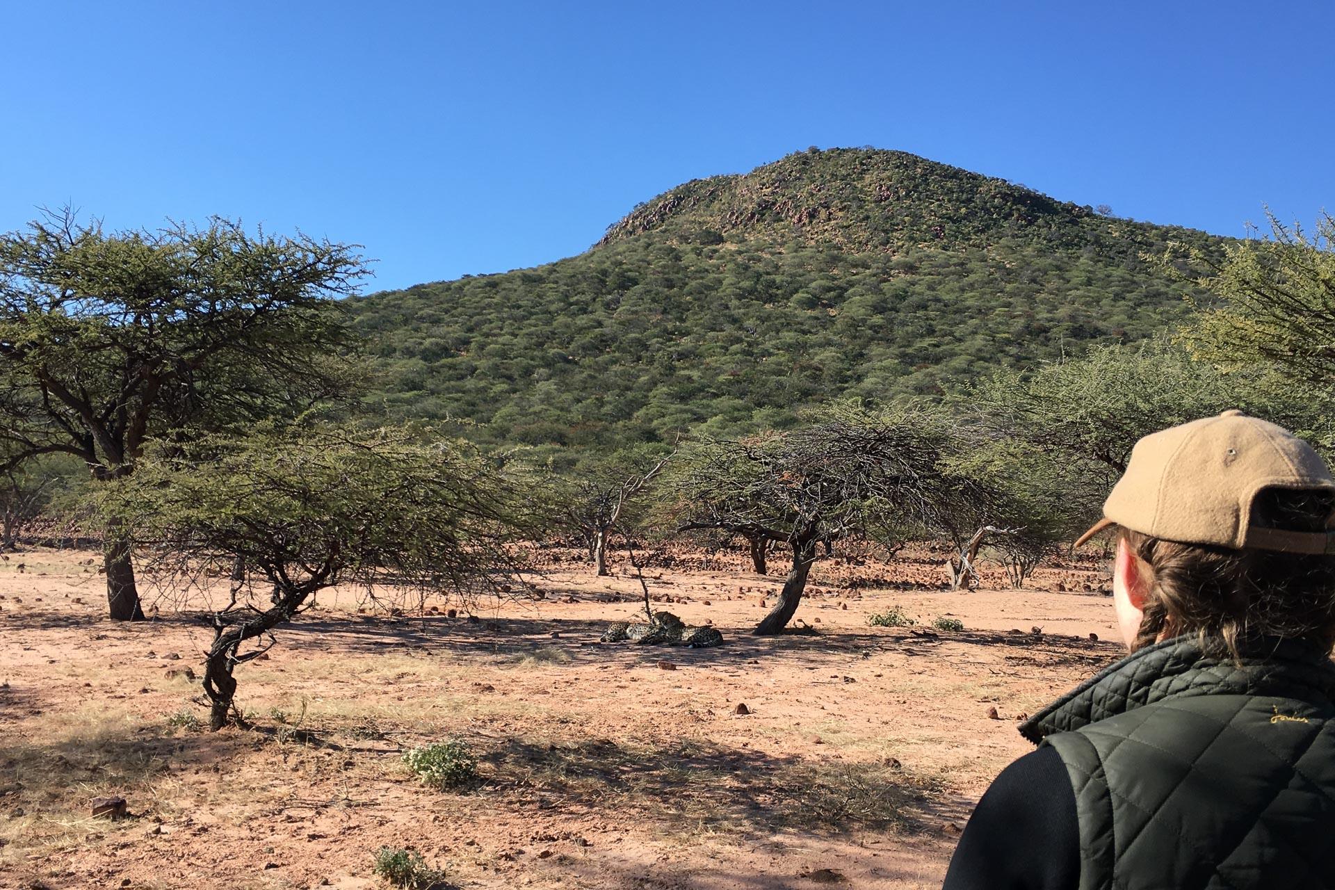 Okonjima-Namibia-Globetrotter-Select-5
