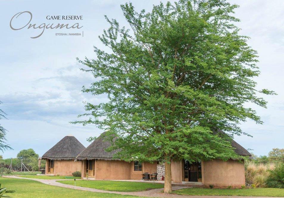 Onguma Bush Camp (4 von 7)