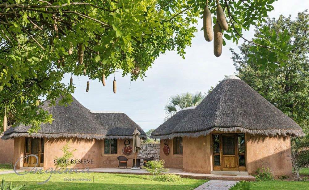Onguma Bush Camp (6 von 7)