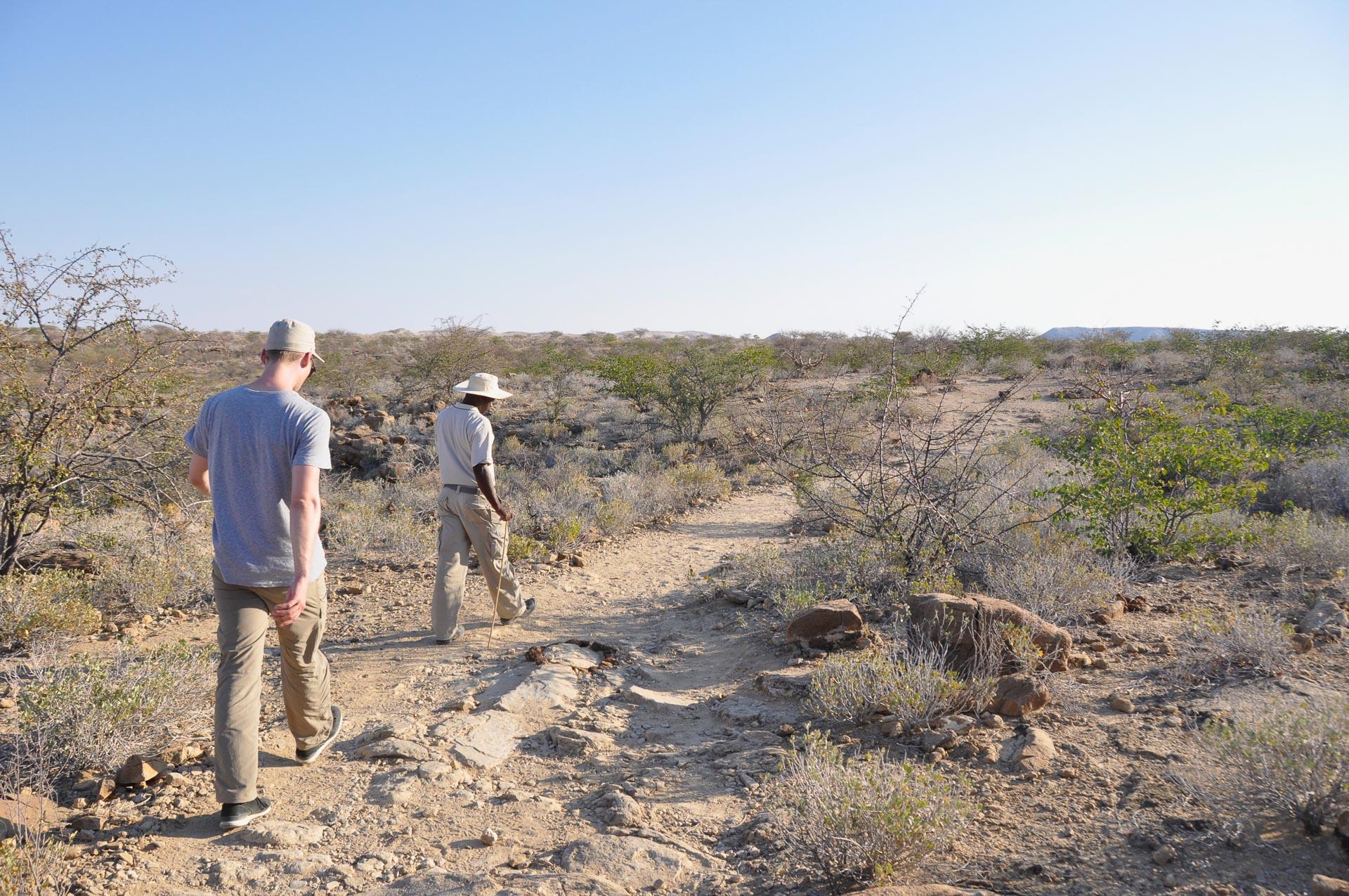 Petrified-Forest-Namibia-Globetrotter-Select-4