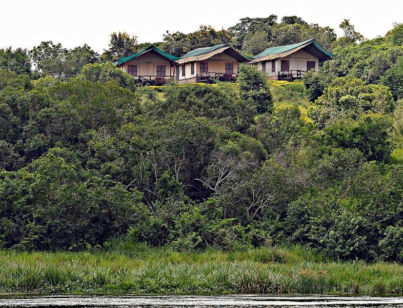 Safari-Deluxe-Tent-Paraa-Safari-Lodge4