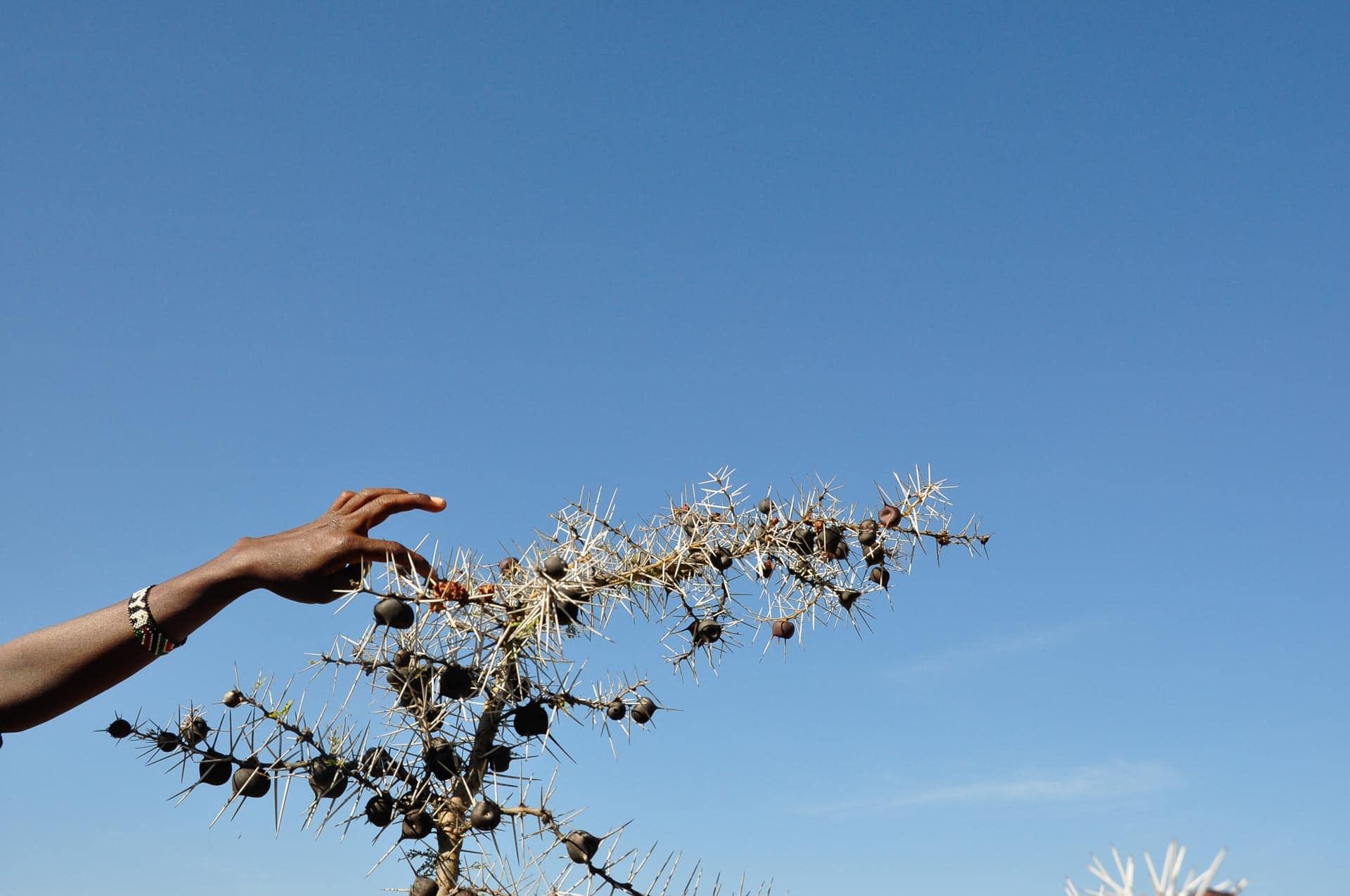 Samburu-Menschen-Kenia-Globetrotter-Select-1