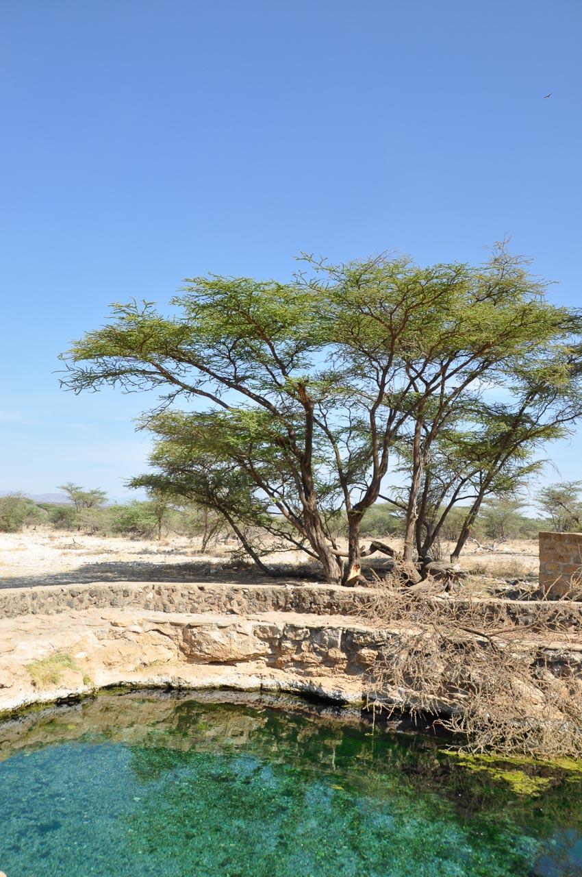 Samburu-Nationalpark-Kenia-Globetrotter-Select-24