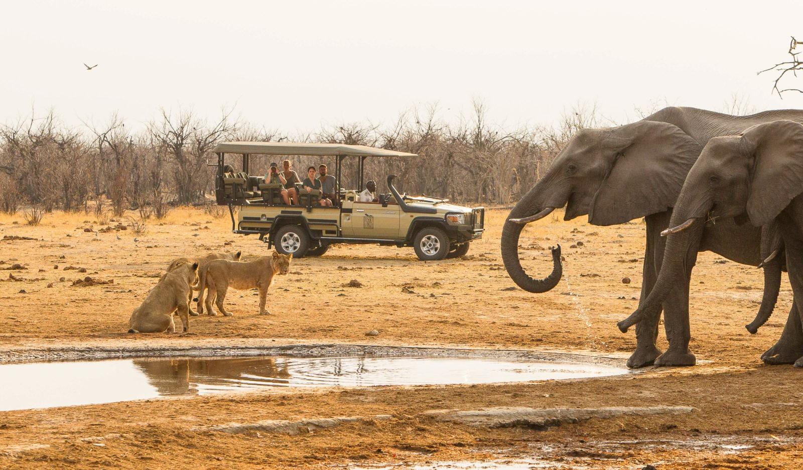 Savuti-Safari-Lodge-Botswana-11