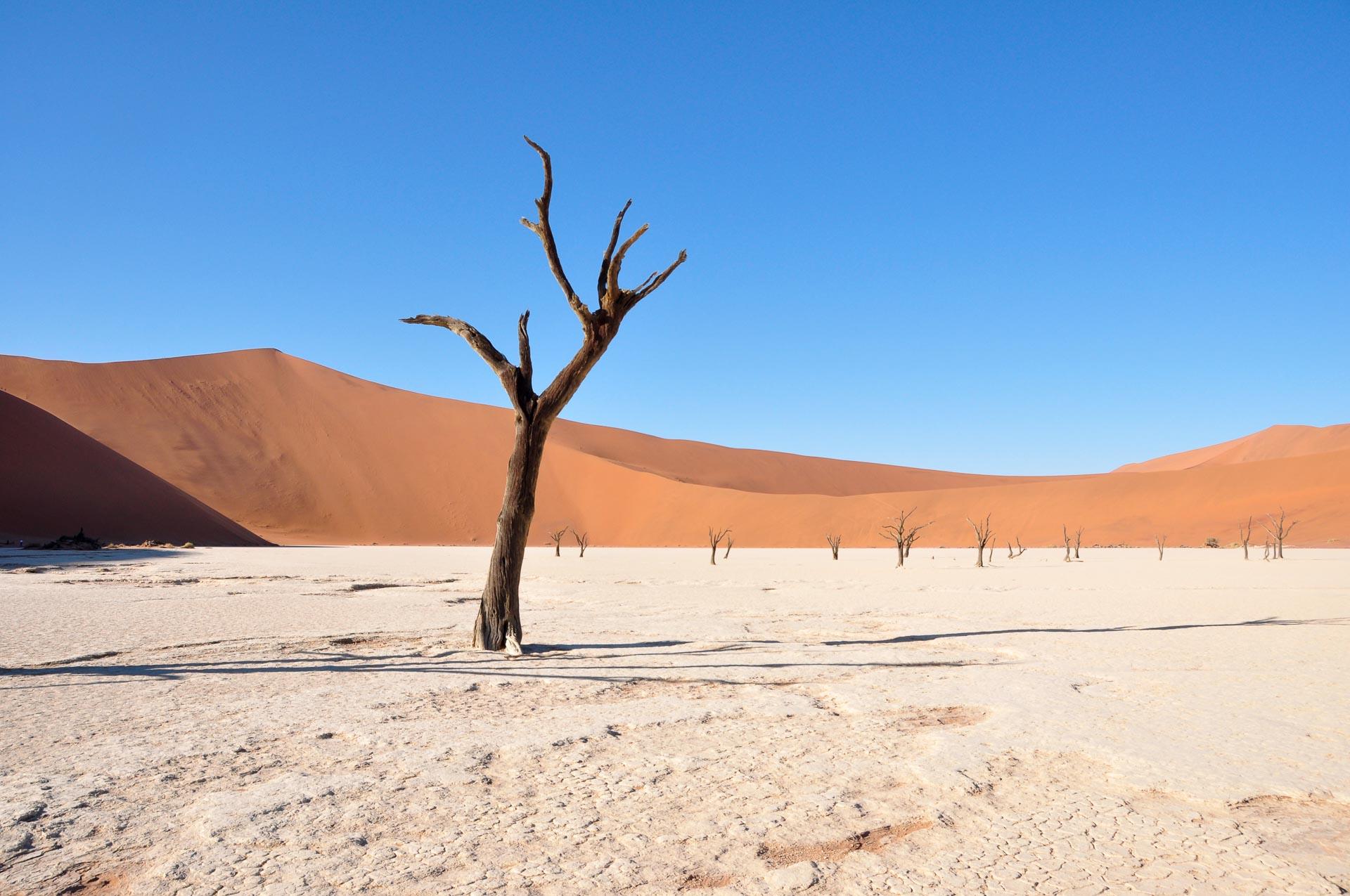 Sossuvlei-Wueste-Namib-Namibia-Globetrotter-Select-22