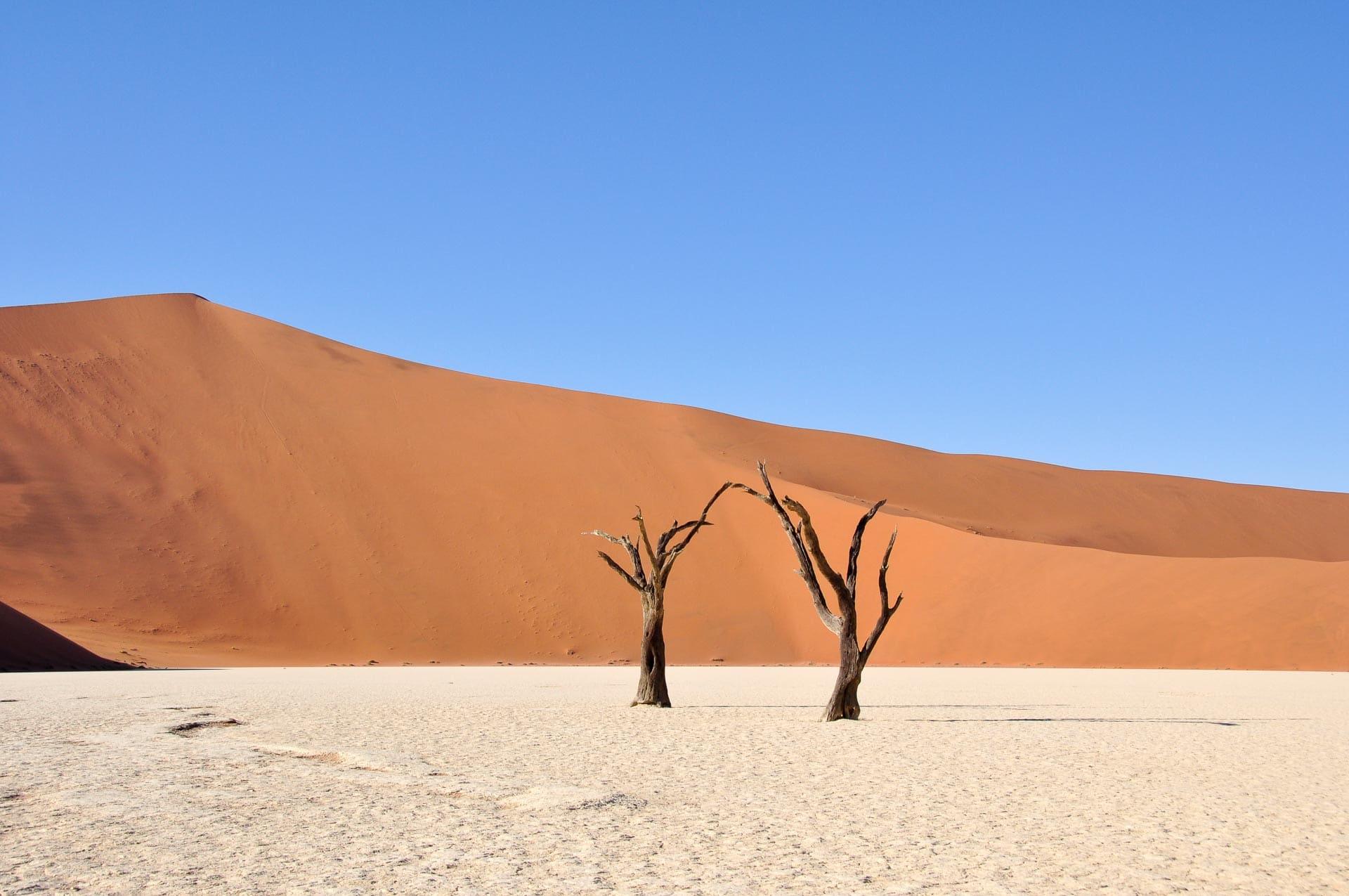 Sossuvlei-Wueste-Namib-Namibia-Globetrotter-Select-31