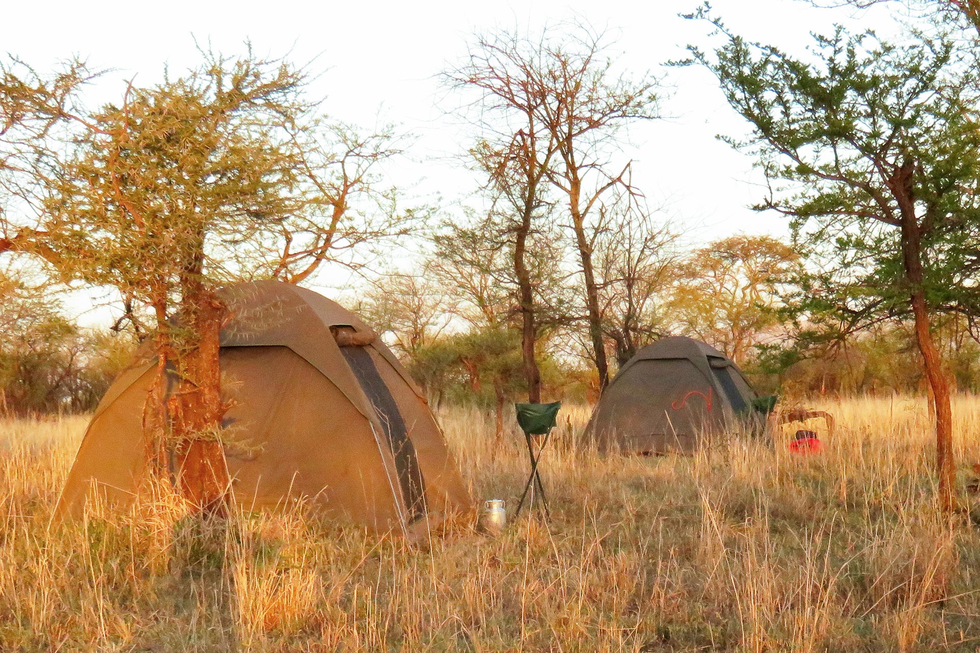 Standard-Zelt-Safari-Tansania-Globetrotter-Select-Kulzer-3