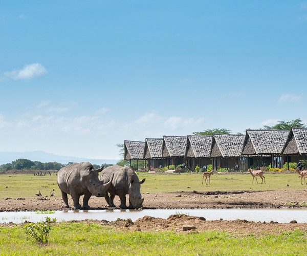 Sweetwaters-Tented-Camp-Serena-5-von-6