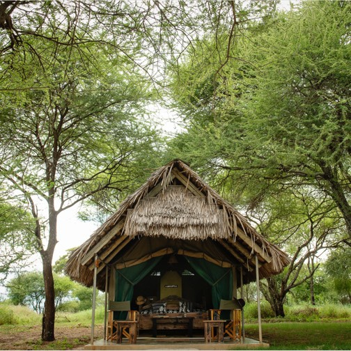 Tarangire-Safari-Lodge (4 von 5)