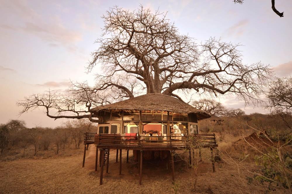 Tarangire Treetops Elewana (7 von 7)-2